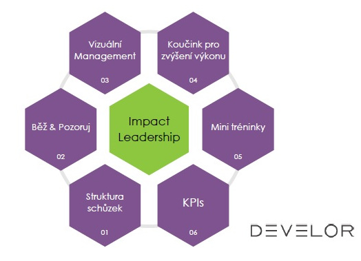 DEVELOR - Impact Leadership