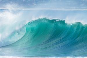 Z rudého do modrého oceánu (1/2): Před žraloky uniknou pouze inovátoři, kteří přinesou hodnotu